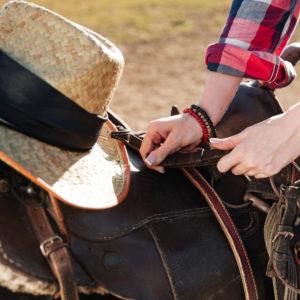 Closeup of saddle